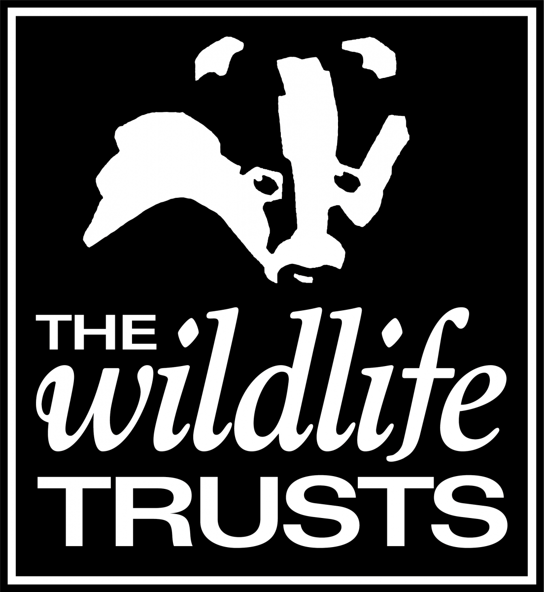 Logo for Wildlife Trusts
